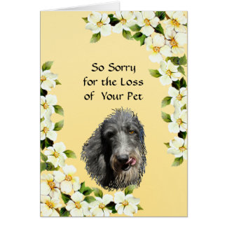 Scottish Deerhound and Dogwood sympathy Card
