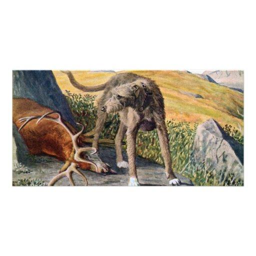 Scottish deerhound personalized photo card