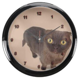 Scottish Fold Cat Aqua Clock