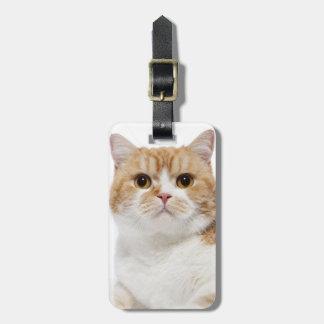 Scottish Fold Cat Bag Tags