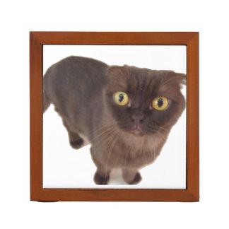 Scottish Fold Cat Desk Organizer Pencil Holder