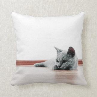 Scottish Fold Cat Kitten Super Cute Throw Pillow