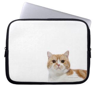 Scottish Fold Cat Laptop Computer Sleeve