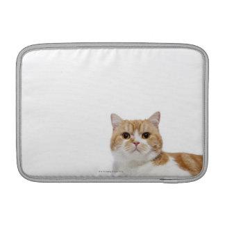 Scottish Fold Cat MacBook Air Sleeves