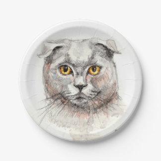 Scottish Fold Cat Paper Plate