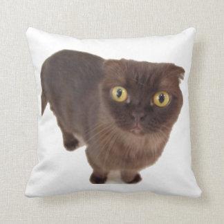 Scottish Fold Cat Pillow Cushion