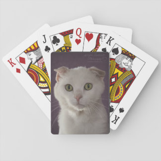 Scottish fold Cat Playing Cards