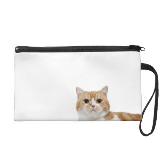 Scottish Fold Cat Wristlet