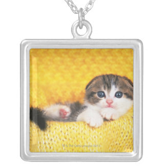 Scottish Fold; is a breed of cat with a natural Silver Plated Necklace