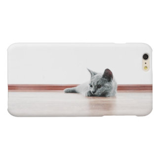 Scottish Fold Kitten Cat Super Cute iPhone 6 Plus Case