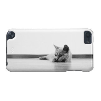 Scottish Fold Kitten Cat Super Cute iPod Touch (5th Generation) Covers