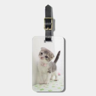 Scottish Fold Kitten Luggage Tag