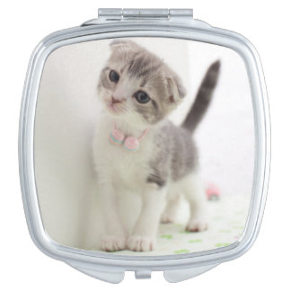Scottish Fold Kitten Mirror For Makeup
