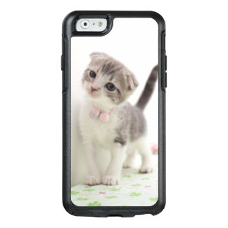 Scottish Fold Kitten OtterBox iPhone 6/6s Case