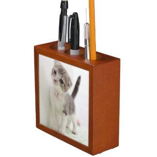 Scottish Fold Kitten Pencil/Pen Holder