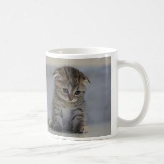 Scottish folding kitten magnetic cup basic white mug