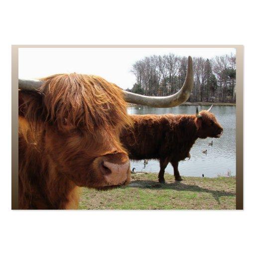 Scottish Highland cattle ~ ATC Business Cards