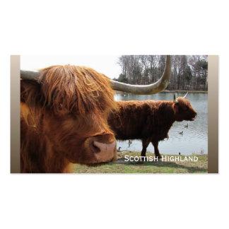 Scottish Highland cattle ~ biz card Pack Of Standard Business Cards