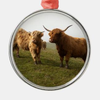 Scottish Highland Cattle - Greener Pastures! Silver-Colored Round Decoration