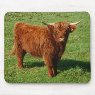 Scottish Highland Cattle Mousepad