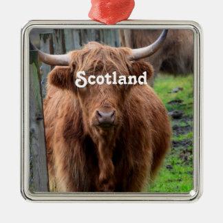 Scottish Highland Cow Square Metal Christmas Ornament
