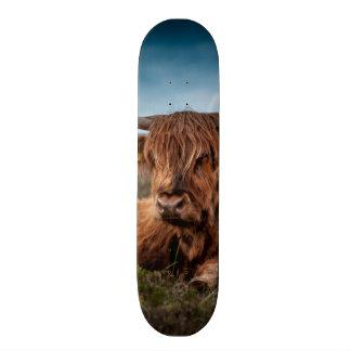 Scottish Highland Cow Longhorn Bull Rancher 20 Cm Skateboard Deck
