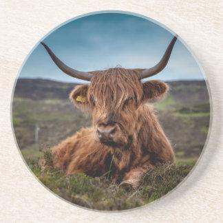 Scottish Highland Cow Longhorn Bull Rancher Coasters
