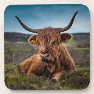 Scottish Highland Cow Longhorn Bull Rancher Coasters