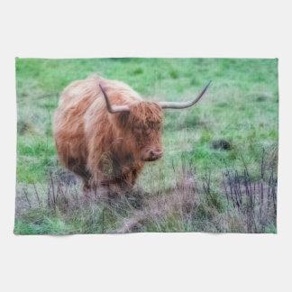 Scottish Highland cow photograph towel