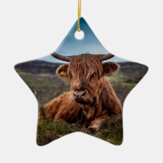 Scottish Highland longhorns Rancher Ceramic Star Decoration