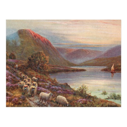 Scottish Highlands Lake Postcard