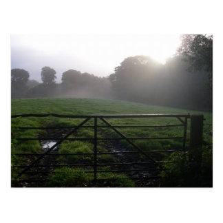 Scottish morning dew post card