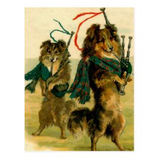 Scottish Piper Dogs Postcard