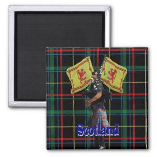 Scottish piper on tartan square magnet