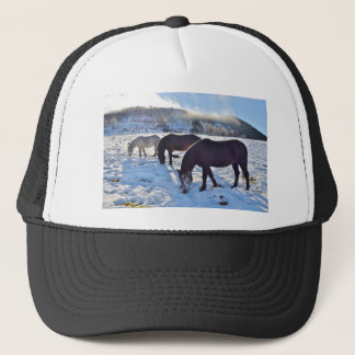 Scottish Ponies Trucker Hat
