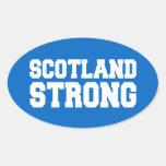 Scottish Referendum Scotland Independant Freedom