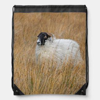 Scottish sheep photograph bag
