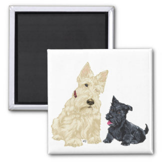 Scottish Terrier Adult and Puppy Square Magnet