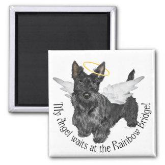 Scottish Terrier Angels Magnet