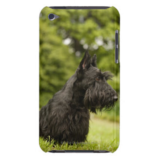 Scottish Terrier Barely There iPod Case