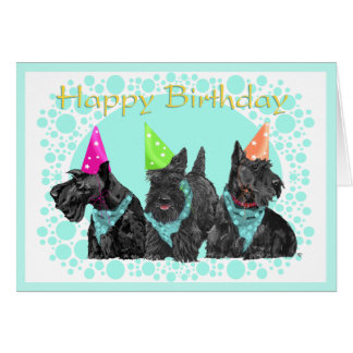Scottish Terrier Birthday Card