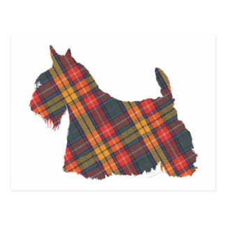 Scottish Terrier Buchanan Tartan Postcard