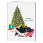 Scottish Terrier Christmas Nap Greeting Card