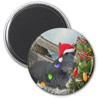 Scottish Terrier Decorates for Christmas Refrigerator Magnets