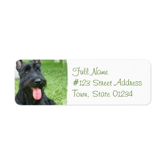 Scottish Terrier Dog Return Address Label
