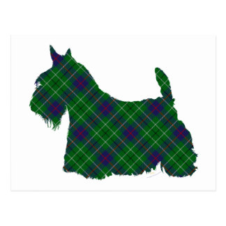 Scottish Terrier Duncan Tartan Postcard