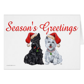 Scottish Terrier Greeting Card