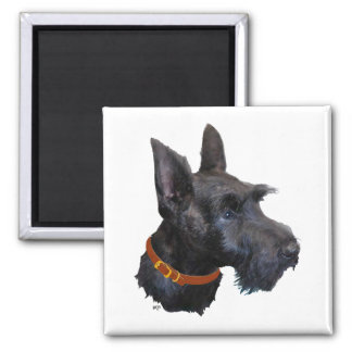 Scottish Terrier Head Study Square Magnet