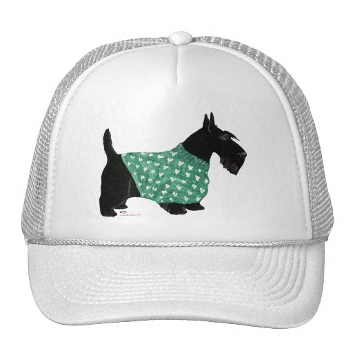 Scottish Terrier in a Sweater Mesh Hat