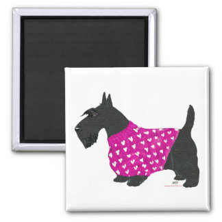 Scottish Terrier in a Sweater Square Magnet